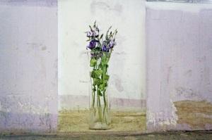 Anna Lise Jensen A@Rpostcard 2012